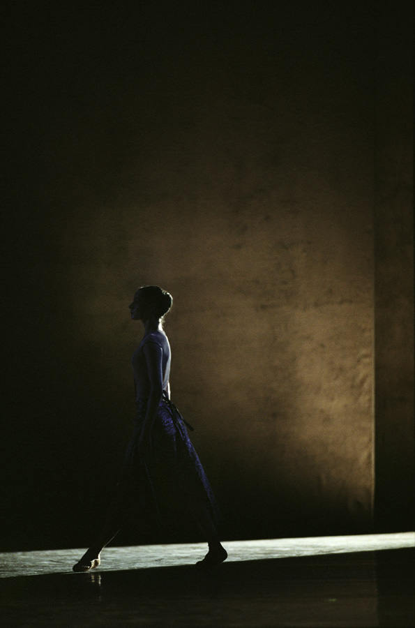 in light and shadow tatyana van walsum