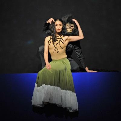 2010 - 2016 Frida